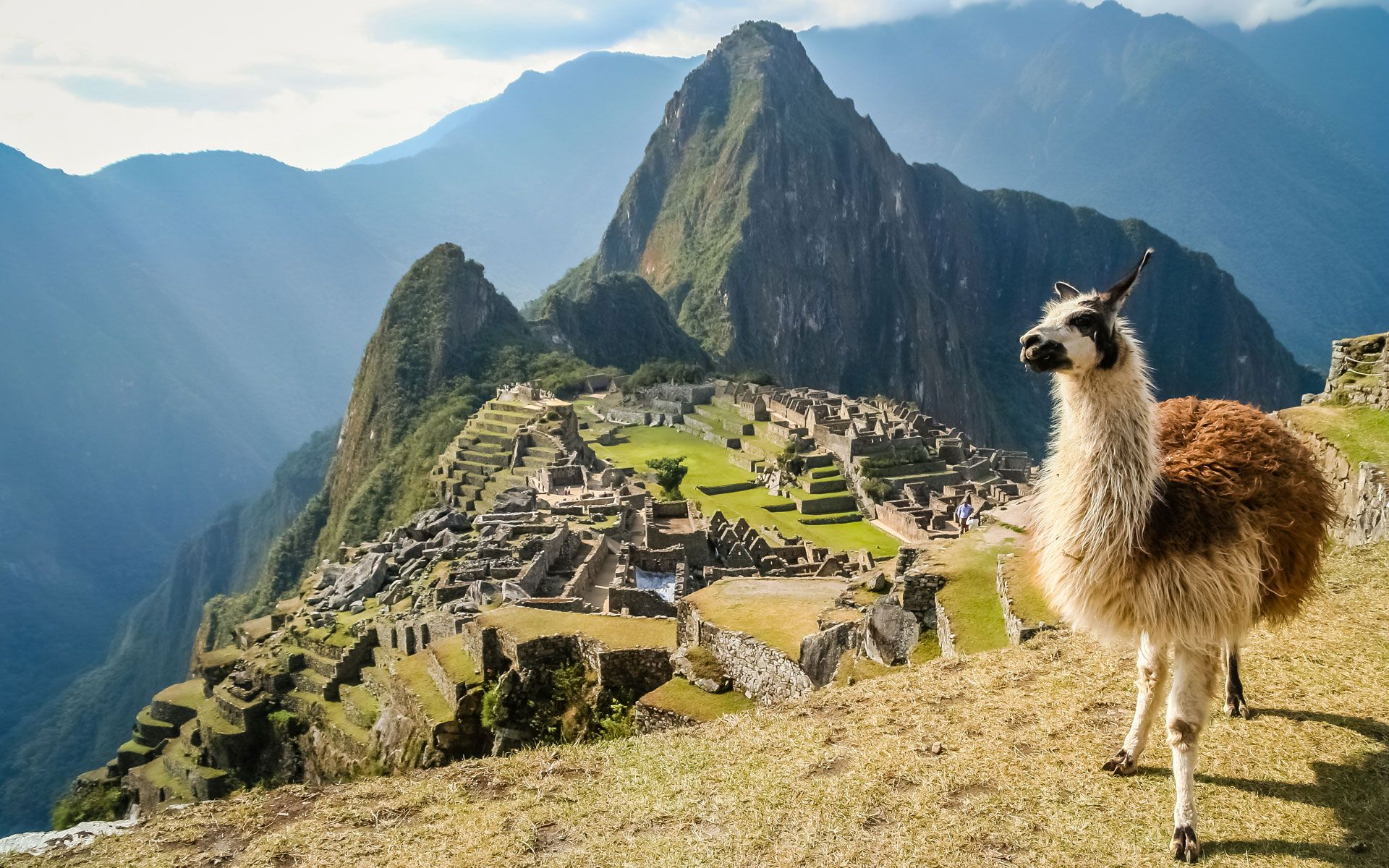 a personal recount on being in cusco peru Which is the best amazon jungle region to visit in peru that will suit your own travel expectations and personal clay-licks being a.